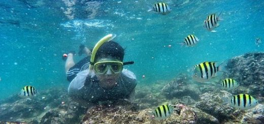 pantai yang biasa untuk snorkel di jogja